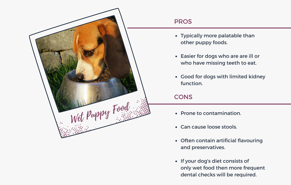 Pros and Cons of Wet Puppy Food