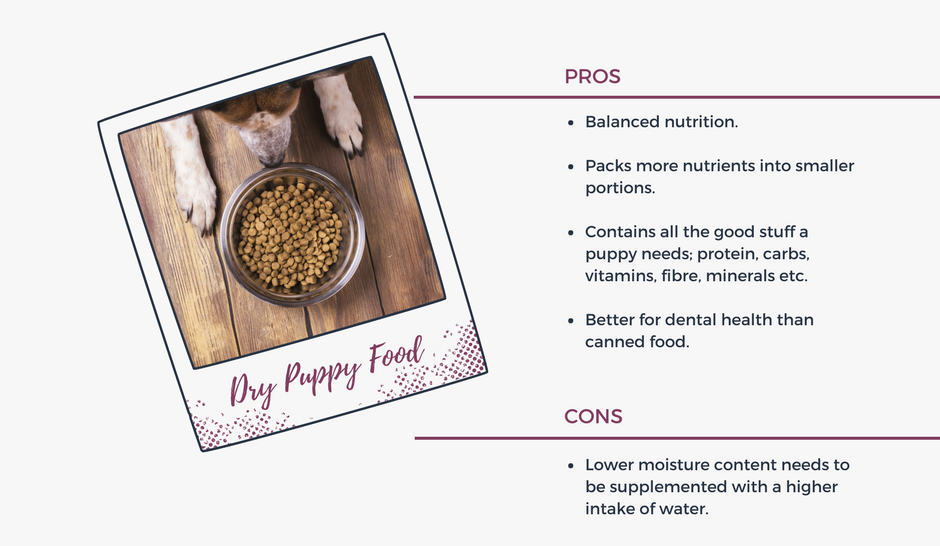 Pros and Cons of Dry Puppy Food