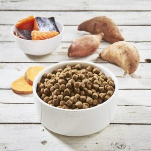 Grain Free Salmon with Sweet Potato & Vegetable Large Breed Puppy Food